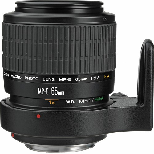Canon Macro Photo MP-E 65mm f/2.8 1-5x Manual Focus Lens for EOS